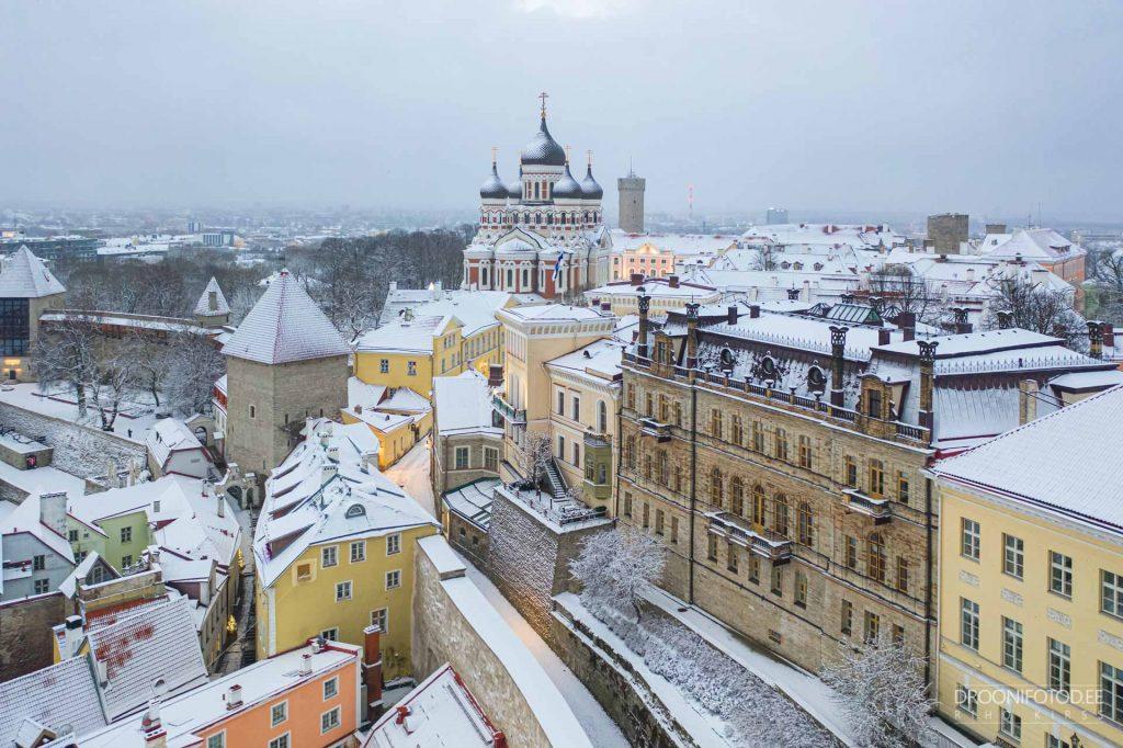 Eesti Teaduste Akadeemia - Talvel