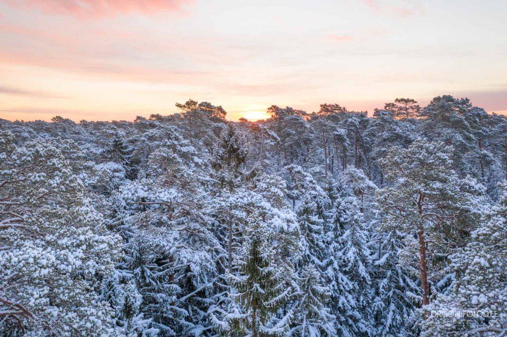 Talvine hommik Vääna-Jõesuus