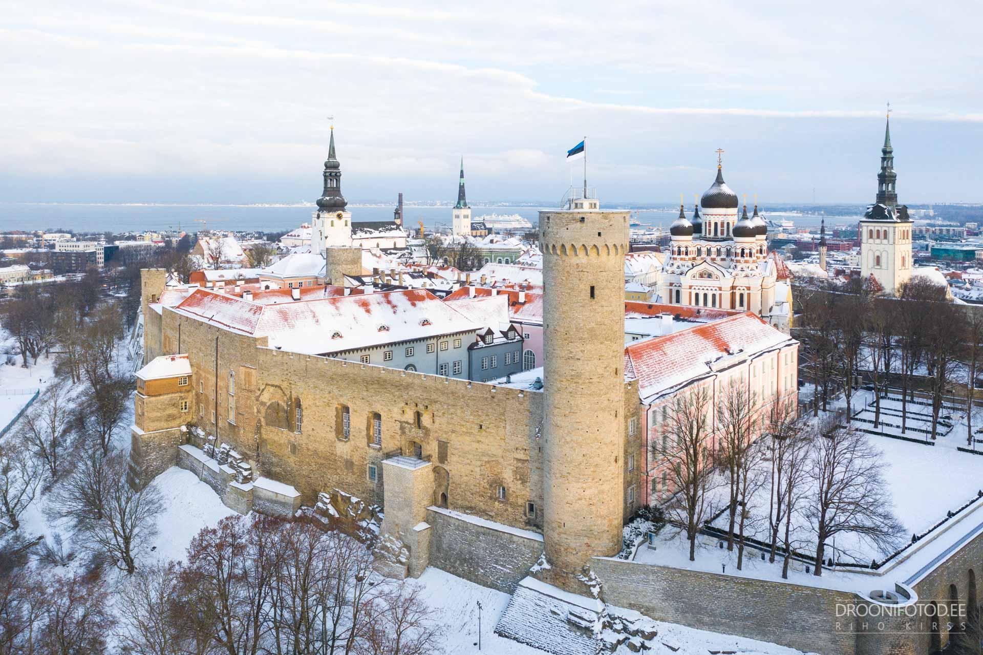 Lumine Toompea loss